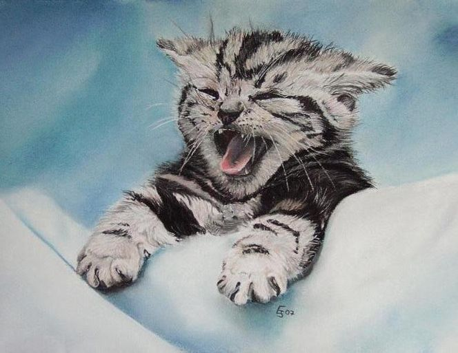 Kunstnet werke malerei tiere little kitty paula
