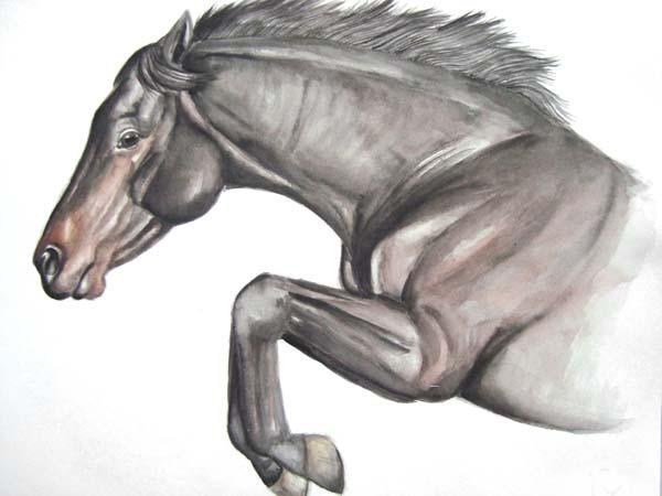 Aquarellmalerei, Auftrag, Pferde, Tierportrait, Malerei, Tiere