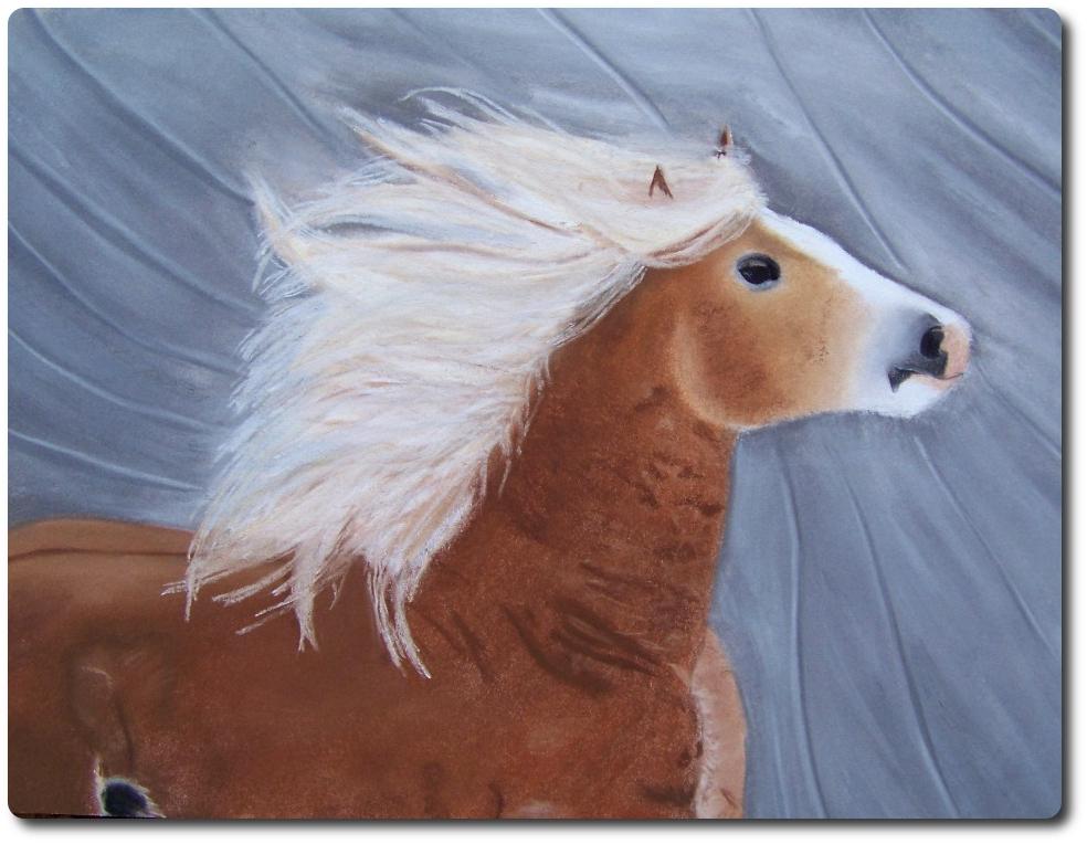 pferd tiere reiten pferde reittier von askara jinn on kunstnet. Black Bedroom Furniture Sets. Home Design Ideas