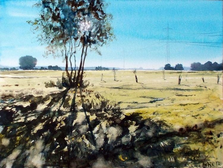Feld, Baum, Wiese, Sonne, Weite, Schatten