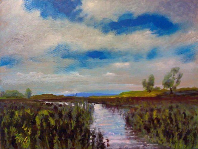 Landschaft, Gewässer, Himmel, Wolken, Weite, Bach