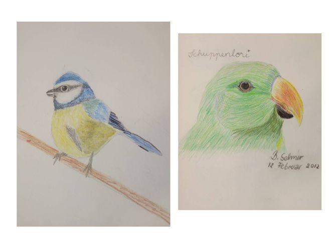 Kinderkunst, Kindermalerei, Zeichnungen