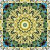 Mandala, Fotografie, Blumen, Weidenkatzen