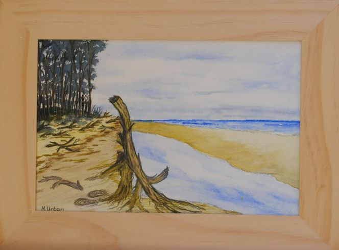 Weststrand, Ostsee, Darß, Natur, Strand, Aquarell