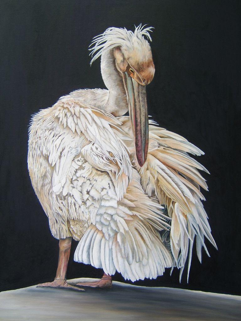 rosa pelikan beim einfetten nach einem foto von adamo bild kunst von eva zeller. Black Bedroom Furniture Sets. Home Design Ideas
