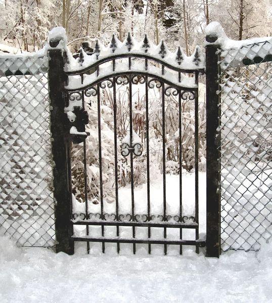 Gartentor, Schwarz weiß, Zuschneien, Zuschließen, Schnee, Zaun
