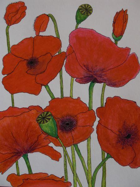 Zeichnung, Pastellmalerei, Malerei, Pflanzen, Mohn
