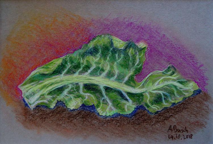 Blätter, Gemüse, Blumenkohl, Zeichnungen,