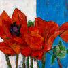 Mohn, Weiß rot, Blumen, Blüte