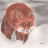 Schnee, Fuchs, Zeichnung, Pastellmalerei