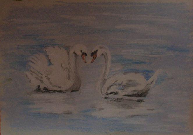 Schwan, Weiß, Pastellmalerei, Gemälde, Liebe, Wasser
