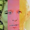 Politische farbenlehre, Gesicht, Menschen, Synthese