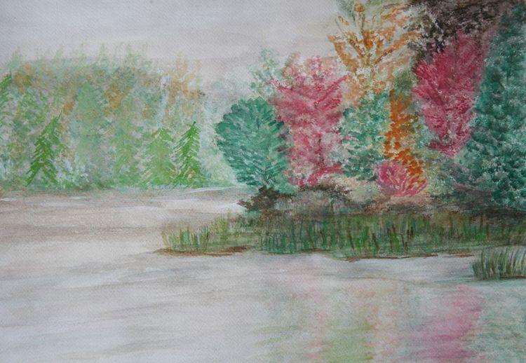 Baum, Spiegelung, Busch, Ruhe, Herbst, Gras