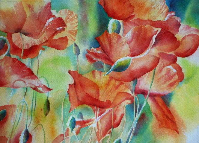 Mohnblumen, Blumen, Aquarellmalerei, Schein, Rot, Schimmer