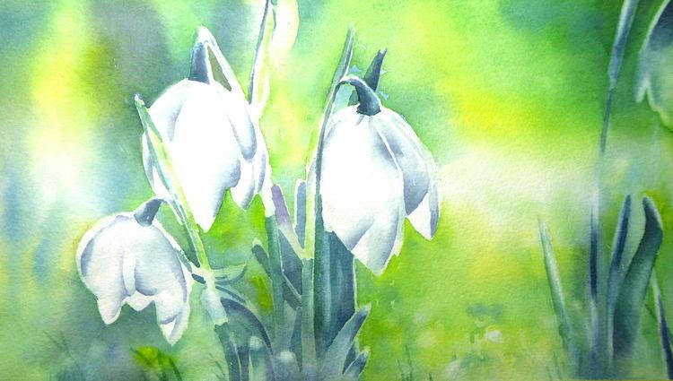 Blumen, Aquarellmalerei, Frühblüher, Märzenbecher, Frühlingsknotenblume, Aquarell