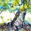 Baum, Aquarellmalerei, Beech, Rhön