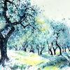 Aquarellmalerei, Olivenbaum, Italien, Olive grove