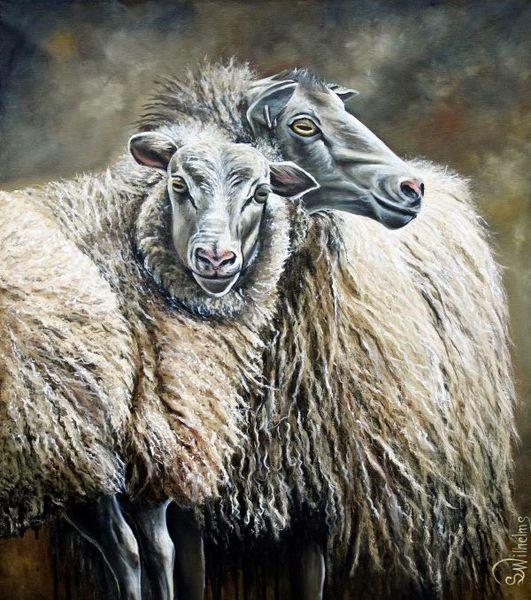 Schaf portrait, Hausschaf, Wolle, Schafwolle, Schaf, Malerei