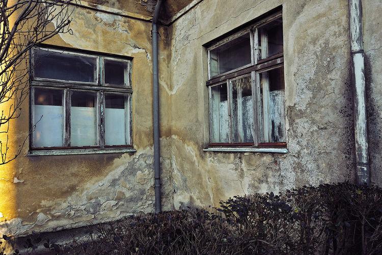 Konzept, Retro, Horror, Fotografie, Gesellschaft, Realität