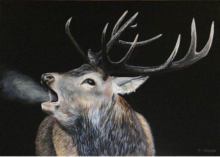 Wildtiere, Hirsch, Jagd, Röhrender hirsch, Pferdeportrait, Malerei