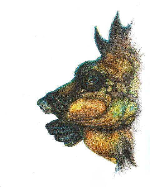 Fisch, Portrait, Gesicht, Zeichnungen, Punk