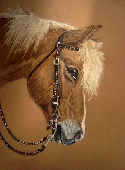 Pastellen, Castell, Pferde, Faber, Malerei,