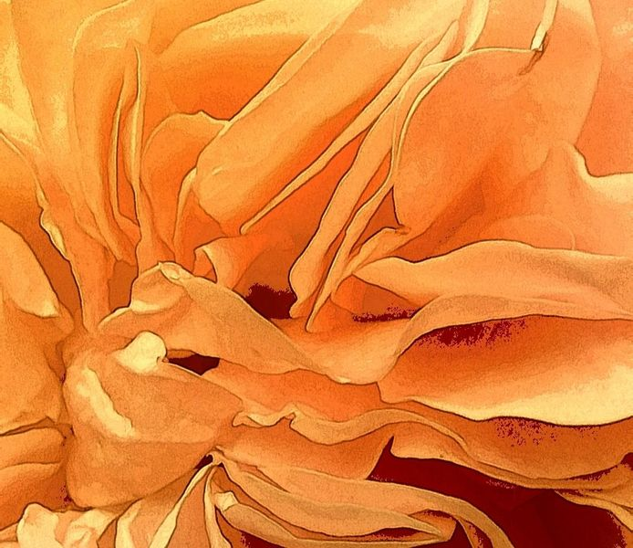Rose, Blätter, Inneres, Romantisch, Digitale kunst