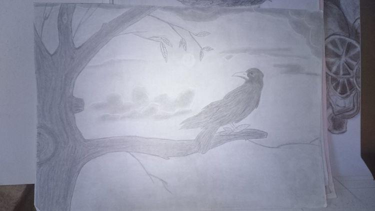 Himmel, Baum, Rabe, Zeichnungen