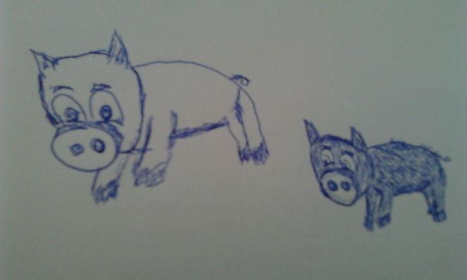 Wildschwein, Zeichnungen,