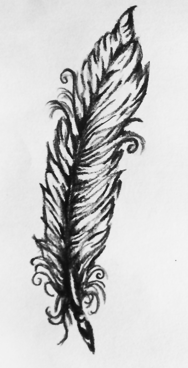 Sketch Feather 2012 Feder Schwarz Weiß Skizze Tattoo Vorlage