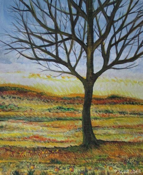 Baum, Orange, Landschaftsmalerei, Ahorn, Feld, Wohlstand