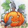 Papagei, Vogel, Kürbisse, Aquarell