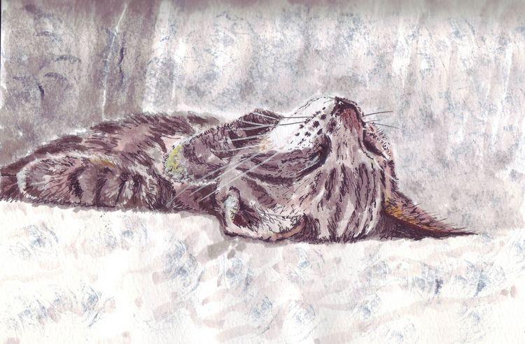 Erschöpft, Müde, Katze, Schlaf, Zeichnungen, Inktober