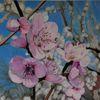 Kirsche, Blüte, Zeichnung, Äste