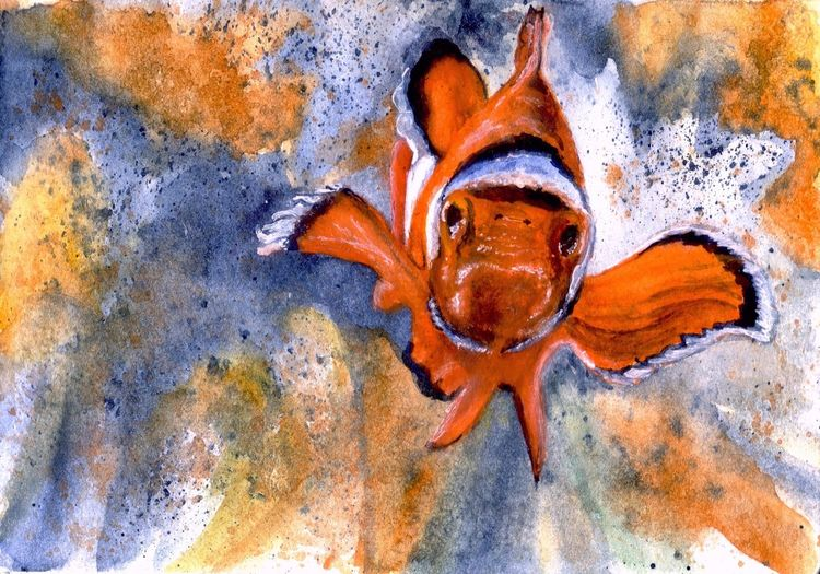 Lebewesen, Fisch, Tiere, Clownfisch, Wasser, Flosse