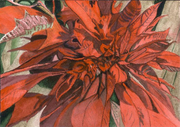 Pflanzen, Blumen, Weihnachsstern, Aquarell