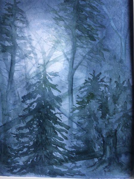 Wald, Mystik, Vollmond, Sturmschäden, Nacht, Vollmondnacht
