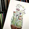 Zeichnung, Frühling, Blumenwiese, Zeichnungen