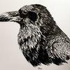 Tuschmalerei, Rabe, Vogel, Tiere