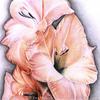 Blumen, Buntstiftzeichnung, Coloredpencils, Zeichnungen
