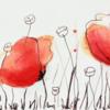 Tuschmalerei, Mohn, Gras, Rot