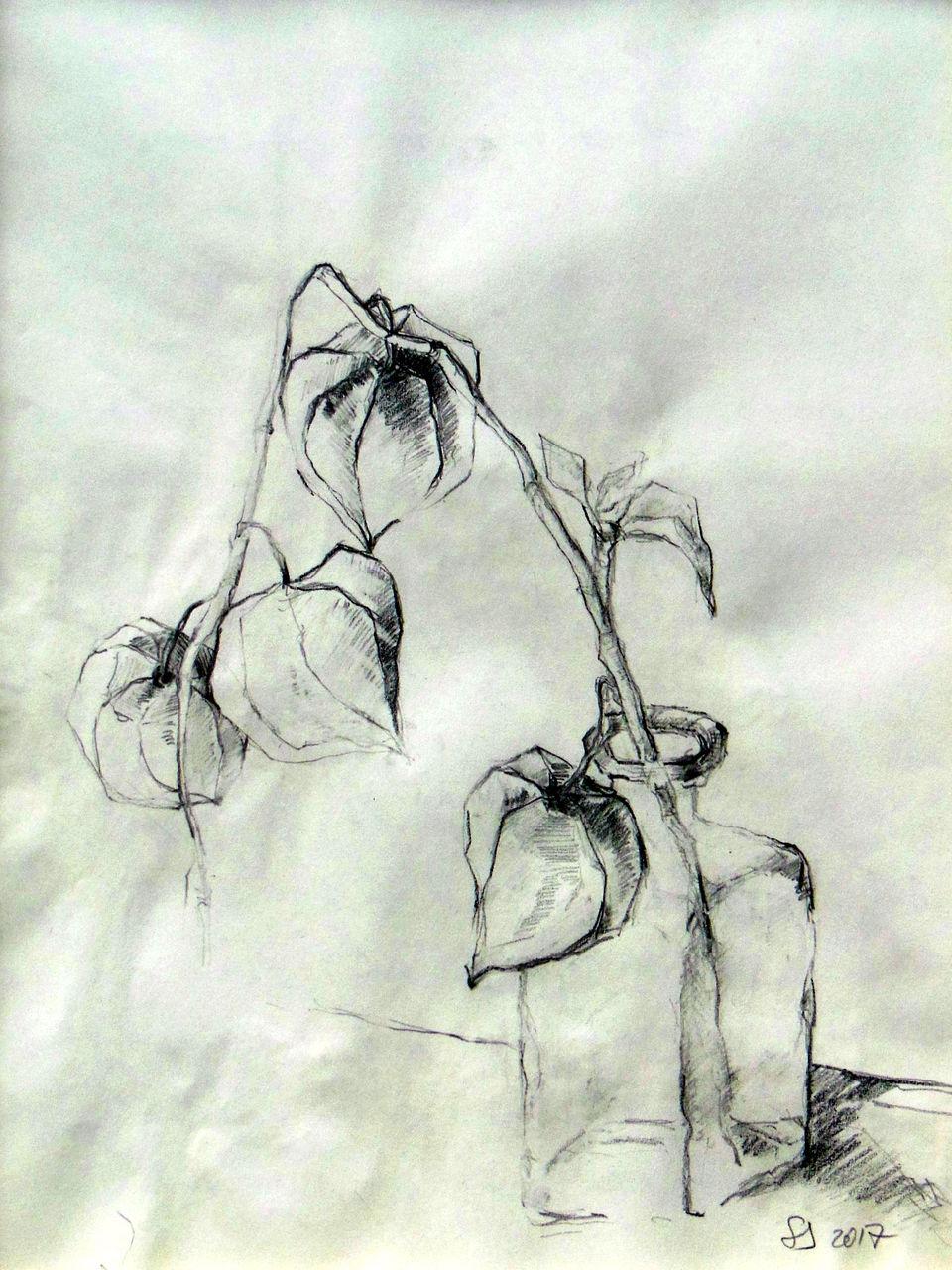 Zeichnung Dankbarkeit Bleistiftzeichnung Stillleben Komposition