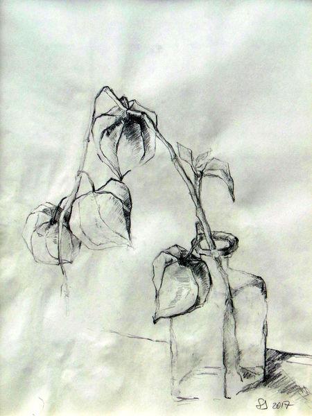 Emotion, Zeichnung, Dankbarkeit, Bleistiftzeichnung, Stillleben, Komposition