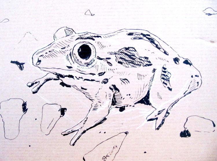 Zeichnung, Kröte, Schwarz, Zeichnungen, Tiere