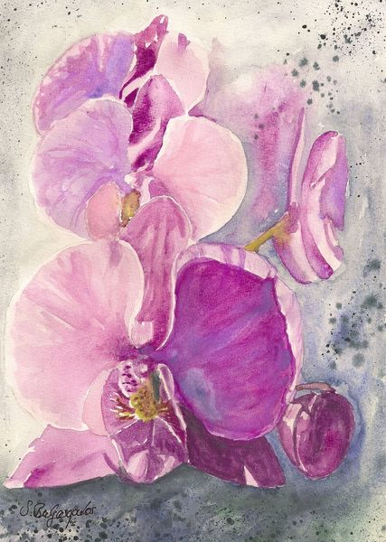 Pflanzen, Blumen, Blüte, Orchidee, Aquarell