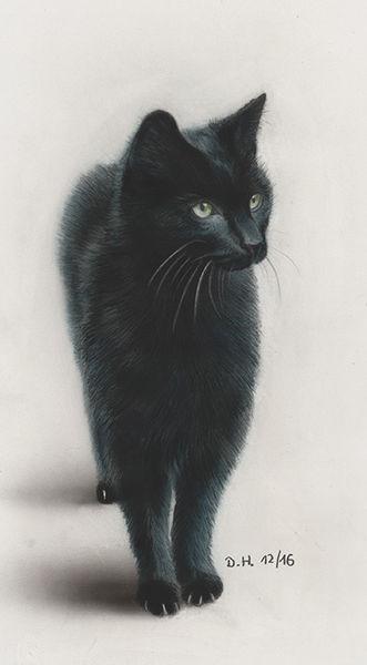 Portrait, Bleistiftzeichnung, Airbrush, Zeichnung, Grafit, Tiere