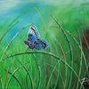Morgenschein, Filigran, Wasser, Schmetterling