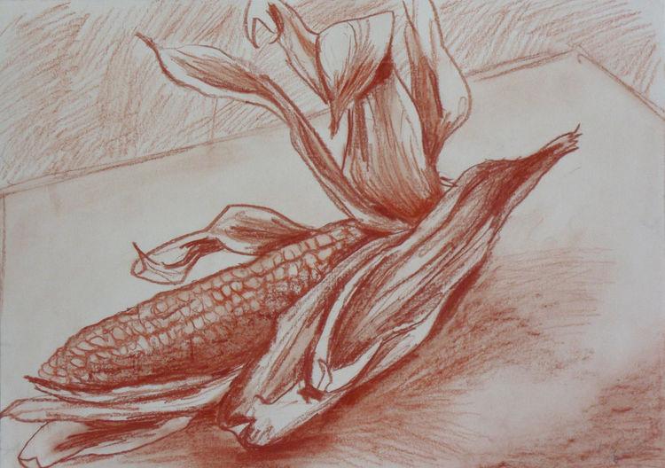 Rötel, Zeichnung, Maiskolben, Skizze, Stillleben, Zeichnungen