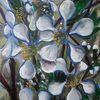 Mirabelle, Blüte, Mirabellenblüten, Malerei