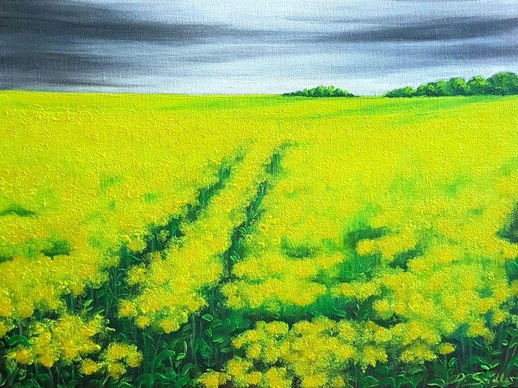 Raps, Himmel, Wolken, Gelb, Malerei